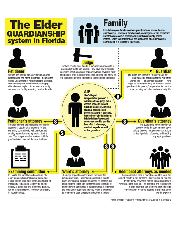 GUARDIANSHIP FLOW CHART